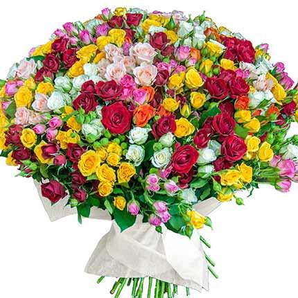 Роза кустовая микс (поштучно) - заказать с доставкой