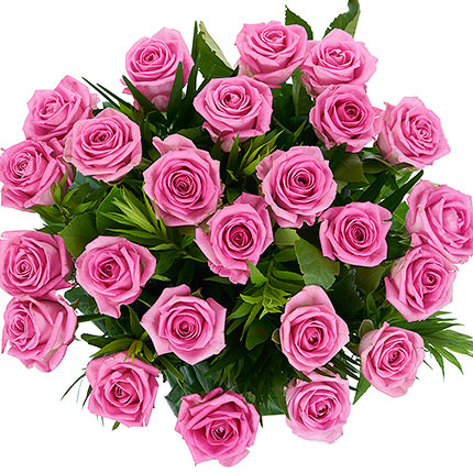 25 pink roses - order with delivery