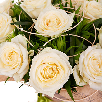 15 creamy roses - order with delivery