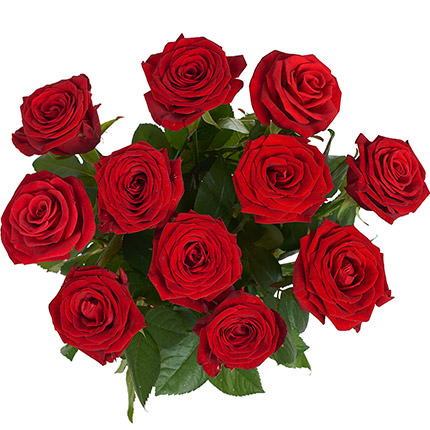 11 red roses + nectarines - delivery in Ukraine