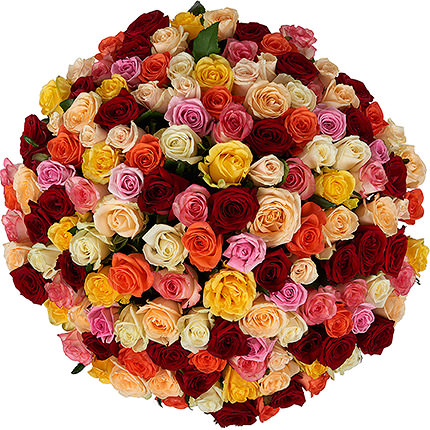 151 разноцветная роза - доставка по Украине
