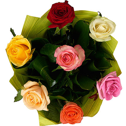 7 multicolored roses - order with delivery