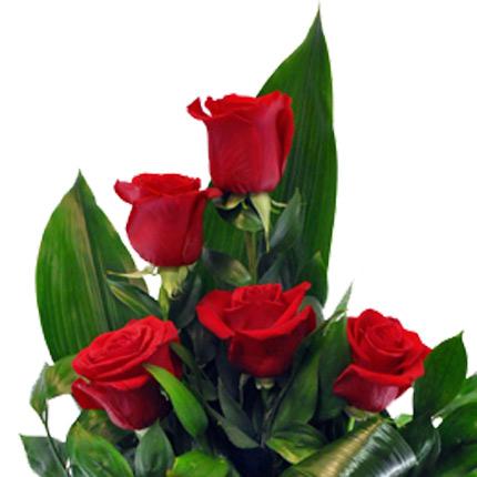 9 красных роз - заказать с доставкой
