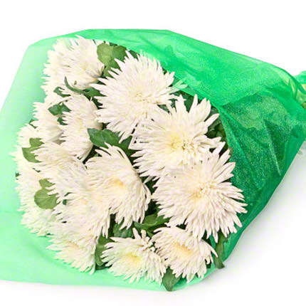 15 white chrysanthemums - delivery in Ukraine