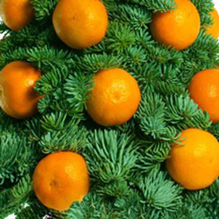 "Christmas tree ""Christmas mandarin"" - delivery in Ukraine"