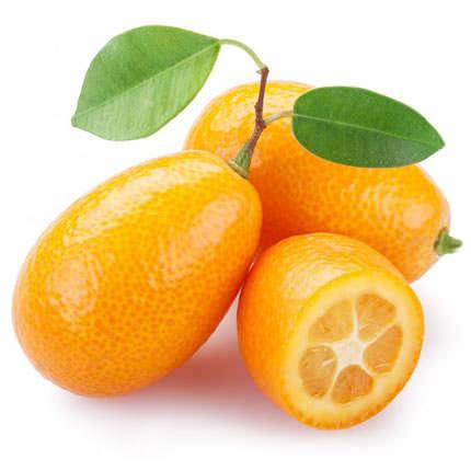 """Комнатное растение """"Цитрус Кумкват"""" (Kumquat) - заказать с доставкой"""