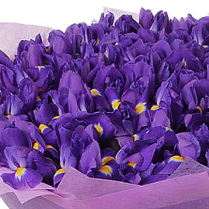 51 фиолетовый ирис - доставка по Украине
