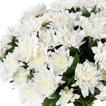 11 веток белой хризантемы - заказать с доставкой