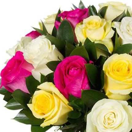 фото жовтих троянд