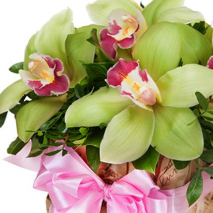 """Цветы в коробке """"Сказочные орхидеи"""" - заказать с доставкой"""