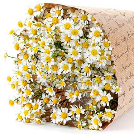 """Bouquet """"The field daisies"""" - delivery in Ukraine"""