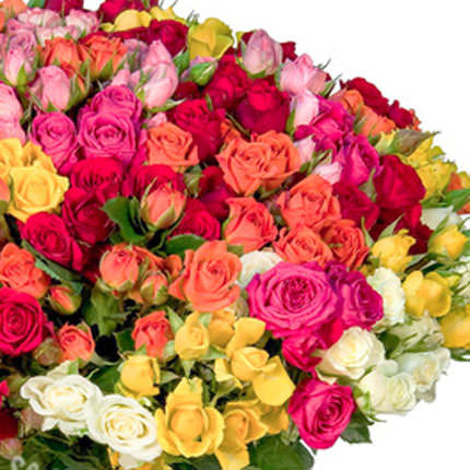 101 multicolored spray roses - delivery in Ukraine