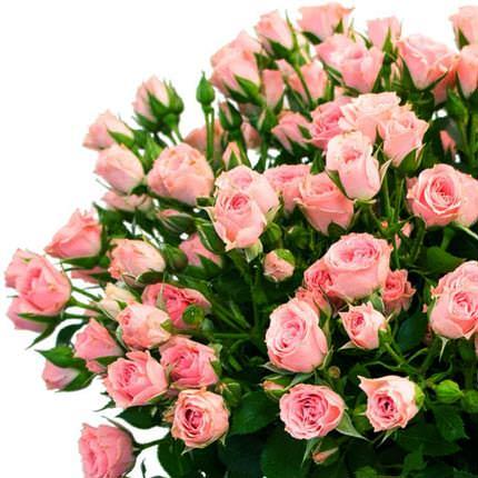 51 кустовая роза - заказать с доставкой