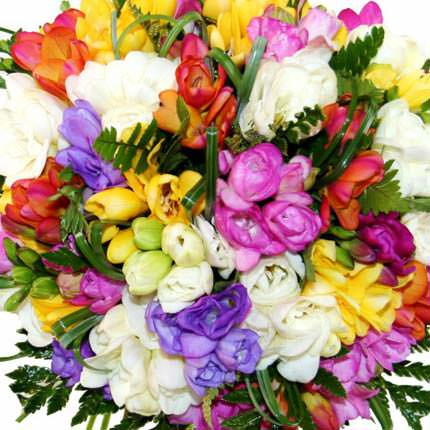 Basket of colorful freesias - delivery in Ukraine