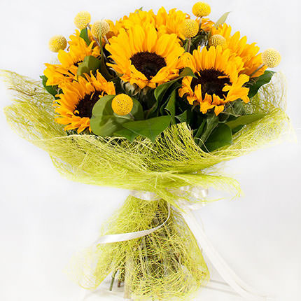 9 bright sunflowers - delivery in Ukraine