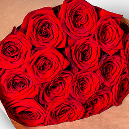 15 red roses - delivery in Ukraine