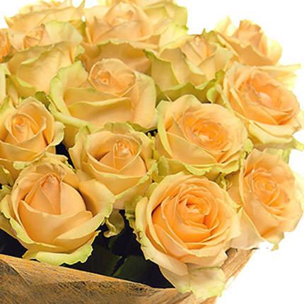 21 кремовая роза - заказать с доставкой