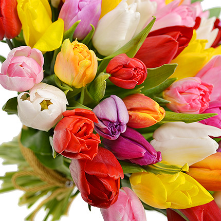 101 multicolored tulips! - order with delivery