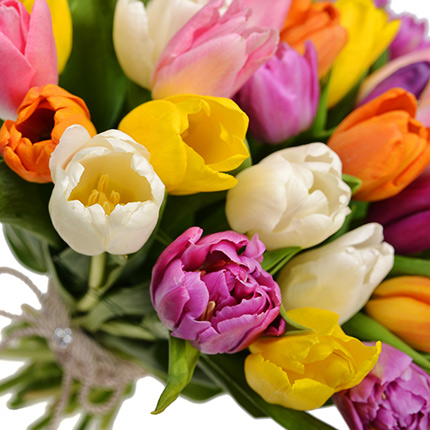51 multicolored tulips! - order with delivery