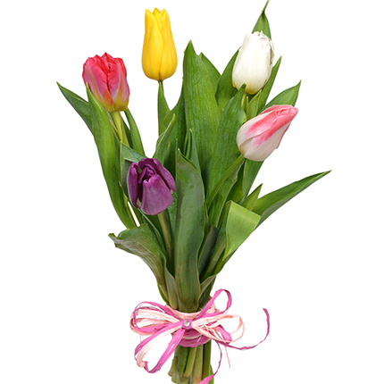 5 different color tulips - delivery in Ukraine