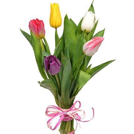 5 разноцветных тюльпанов - доставка по Украине