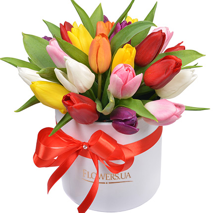 "Flowers in a box ""25 bright tulips"" - delivery in Ukraine"