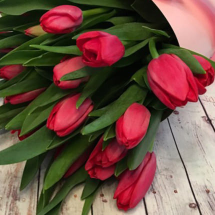 "Bouquet in the cone-package ""19 pink tulips"" - delivery in Ukraine"