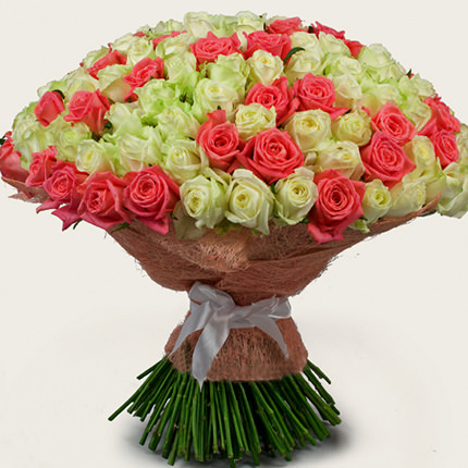 251 white and pink rose - delivery in Ukraine