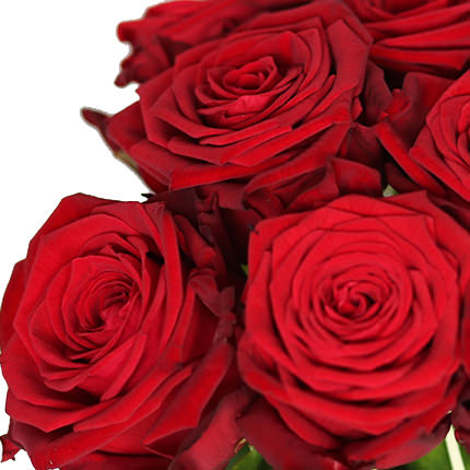 1000 red roses! - order with delivery