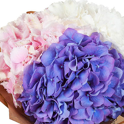 "Delicate bouquet ""Cotton candy"" - order with delivery"