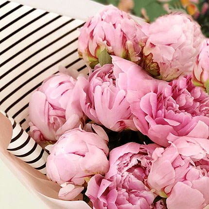 11 tender peonies - order with delivery