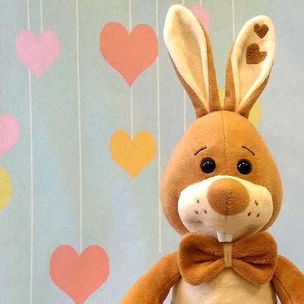 "Bunny ""Sasha"" - delivery in Ukraine"