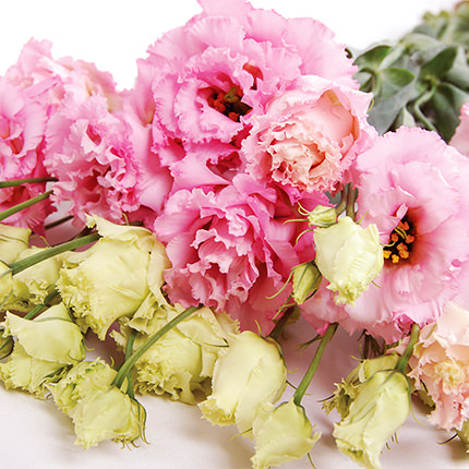 """Delicate bouquet """"Viennese Waltz"""" - delivery in Ukraine"""