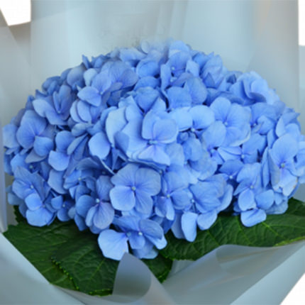 "Romantic bouquet ""Miracle"" - delivery in Ukraine"
