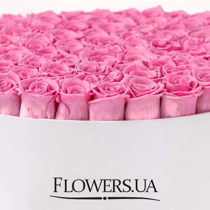 "Flowers in a box ""101 pink roses"" - delivery in Ukraine"