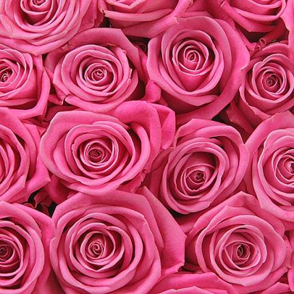 """Квіти в коробці """"101 рожева троянда"""" - замовити з доставкою"""