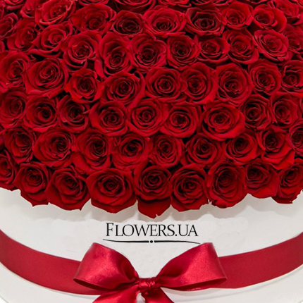 "Flowers in a white box ""151 red roses"" - delivery in Ukraine"
