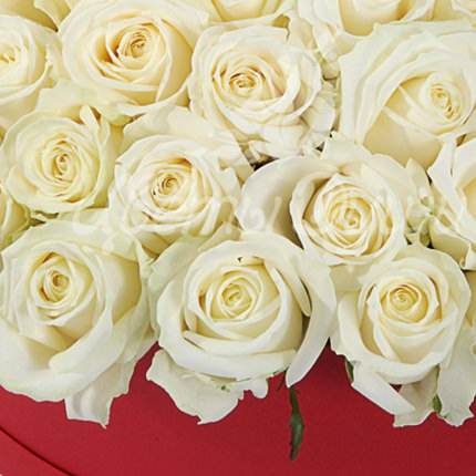 "Composition in a box ""51 white roses"" - delivery in Ukraine"