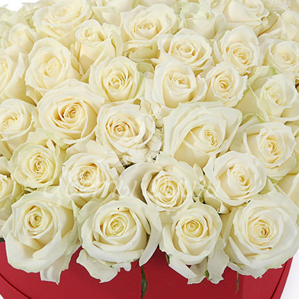 "Composition in a box ""51 white roses"" - order with delivery"