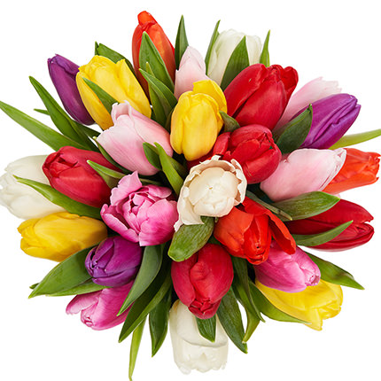 "Flowers in the box ""25 colorful tulips"" - order with delivery"