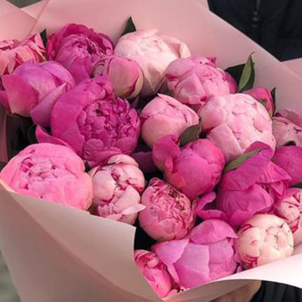19 tender peonies - delivery in Ukraine