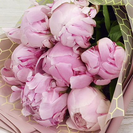 7 tender peonies - order with delivery