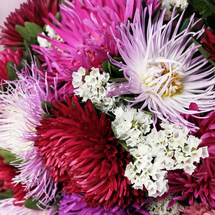 15 colorful asters - delivery in Ukraine