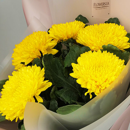 5 yellow chrysanthemums - order with delivery