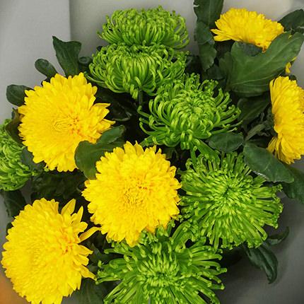 11 жовтих і зелених хризантем - доставка по Україні