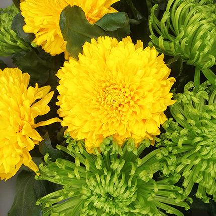 11 жовтих і зелених хризантем - замовити з доставкою