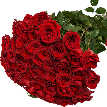 51 red roses one meter high - order with delivery