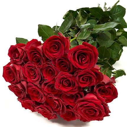 25 метровых роз - доставка по Украине