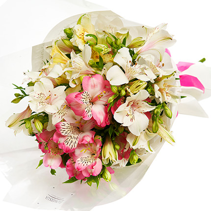 7 delicate alstroemerias - order with delivery