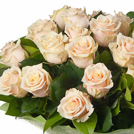 25 creamy roses - delivery in Ukraine